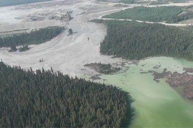 Mount Polley disaster: is the Federal Government being exceptionally heavy handed?