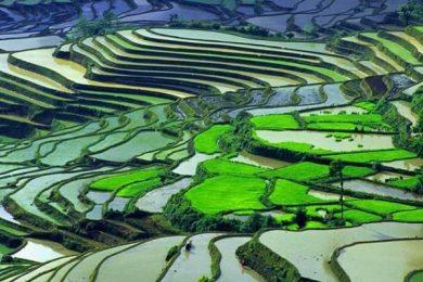 Asia Tin Summit to explore China sustainability initiatives