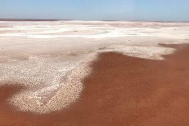 BCI Minerals brings in GR Engineering for Mardie potash DFS