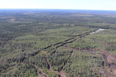 Canada Nickel's Crawford mine could be low carbon nickel leader, Skarn says