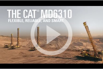 VIDEO: Cat MD6310